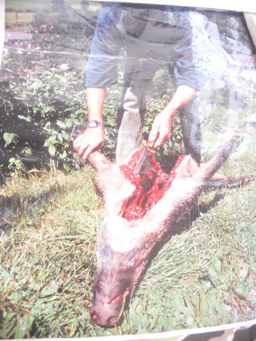 03 dicembre 2011 Trento fiaccolata per denunciare lo sterminio degli animali nel periodo natalizio (e non solo!) 319