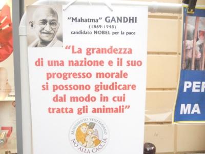 03 dicembre 2011 Trento fiaccolata per denunciare lo sterminio degli animali nel periodo natalizio (e non solo!) 160