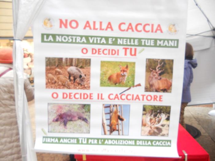 03 dicembre 2011 Trento fiaccolata per denunciare lo sterminio degli animali nel periodo natalizio (e non solo!) 356