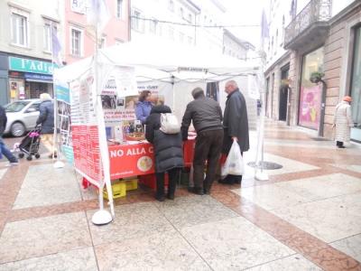 03 dicembre 2011 Trento fiaccolata per denunciare lo sterminio degli animali nel periodo natalizio (e non solo!) 178