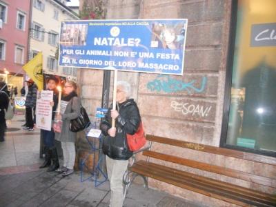 03 dicembre 2011 Trento fiaccolata per denunciare lo sterminio degli animali nel periodo natalizio (e non solo!) 6