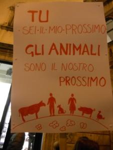 03 dicembre 2011 Trento fiaccolata per denunciare lo sterminio degli animali nel periodo natalizio (e non solo!) 19