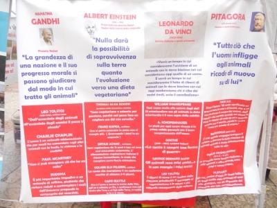03 dicembre 2011 Trento fiaccolata per denunciare lo sterminio degli animali nel periodo natalizio (e non solo!) 28