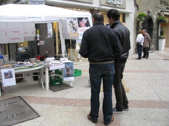TRENTO - 12.03.2011 - TAVOLO INFORMATIVO SULLA VIVISEZIONE 131