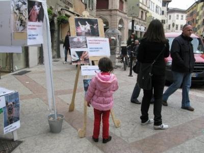 TRENTO - 12.03.2011 - TAVOLO INFORMATIVO SULLA VIVISEZIONE 30