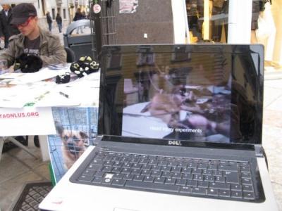 TRENTO - 12.03.2011 - TAVOLO INFORMATIVO SULLA VIVISEZIONE 32
