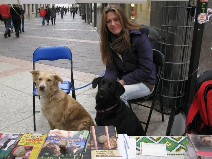 TRENTO - 12.03.2011 - TAVOLO INFORMATIVO SULLA VIVISEZIONE 136