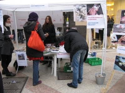 TRENTO - 12.03.2011 - TAVOLO INFORMATIVO SULLA VIVISEZIONE 50