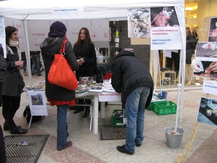 TRENTO - 12.03.2011 - TAVOLO INFORMATIVO SULLA VIVISEZIONE 152