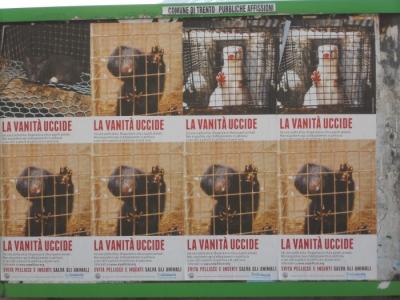 Campagna contro le pellicce - Trento dicembre 2012 8