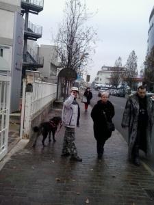 Campagna contro le pellicce - Trento dicembre 2012 3