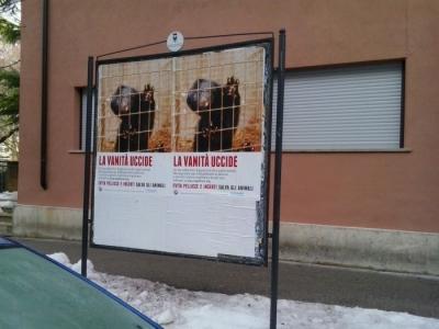 Campagna contro le pellicce - Trento dicembre 2012 17