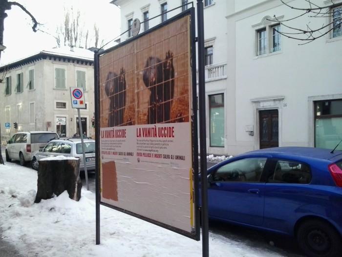 Campagna contro le pellicce - Trento dicembre 2012 39
