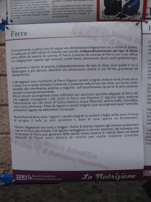 TRENTO VEG 2012 156