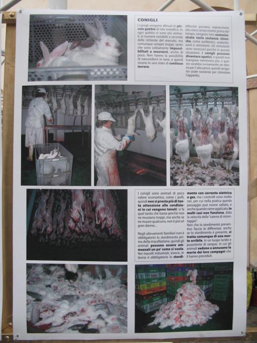 TRENTO VEG 2012 183