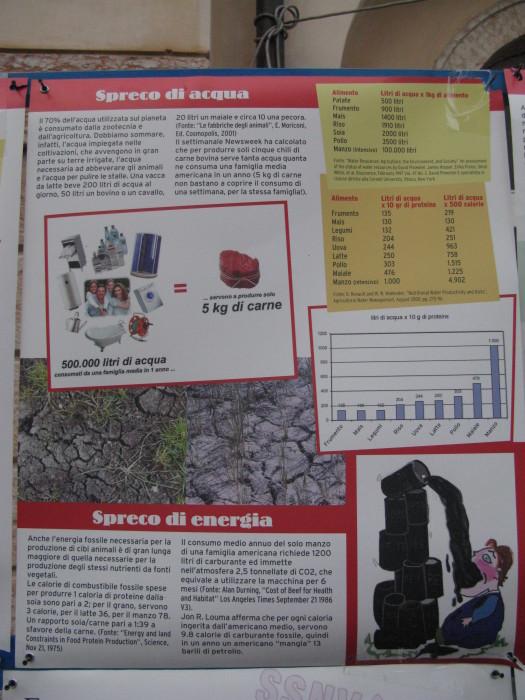 TRENTO VEG 2012 253