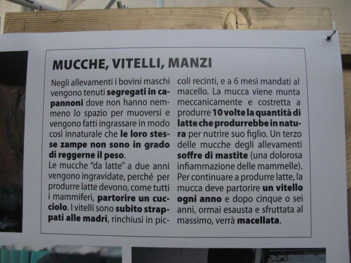 TRENTO VEG 2012 266