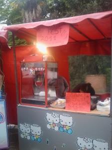VEGAN FEST 2011- 22/25 APRILE - CAMARIORE 219
