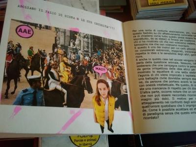 VEGAN FEST 2011- 22/25 APRILE - CAMARIORE 233