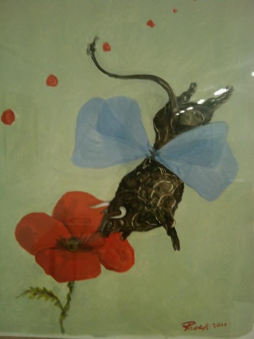 VEGAN FEST 2011- 22/25 APRILE - CAMARIORE 502