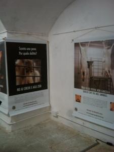 VEGAN FEST 2011- 22/25 APRILE - CAMARIORE 251