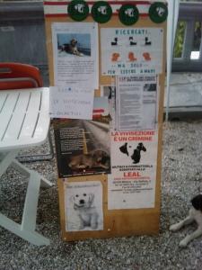 VEGAN FEST 2011- 22/25 APRILE - CAMARIORE 41