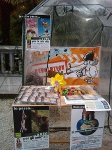VEGAN FEST 2011- 22/25 APRILE - CAMARIORE 83