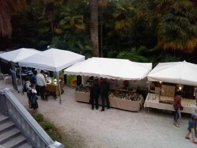 VEGAN FEST 2011- 22/25 APRILE - CAMARIORE 101