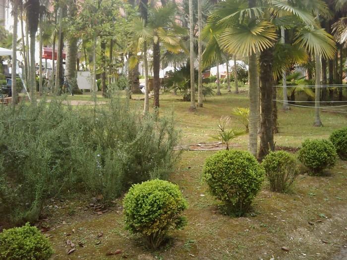 VEGAN FEST 2011- 22/25 APRILE - CAMARIORE 359