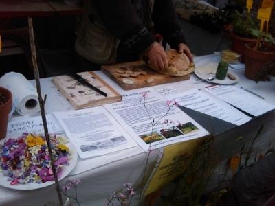 VEGAN FEST 2011- 22/25 APRILE - CAMARIORE 156