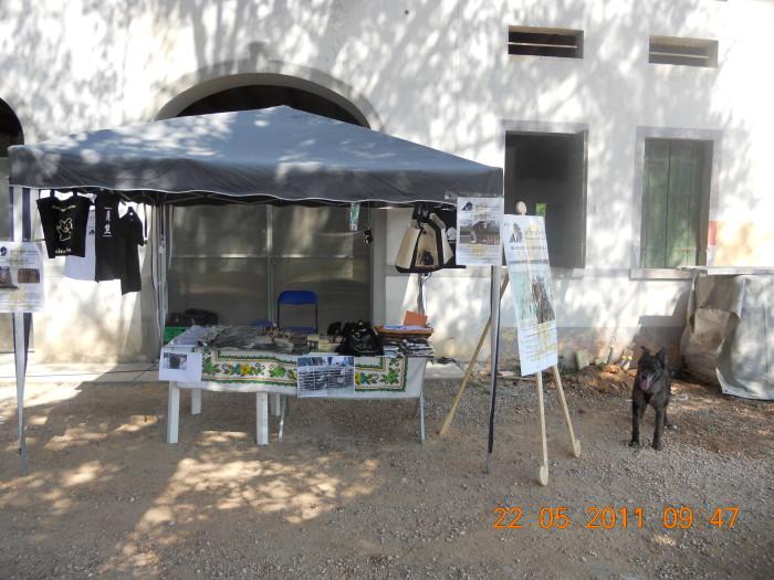 TAVOLO ANIMALS ASIA - Giavera del Montello (TV) - 22 maggio 211