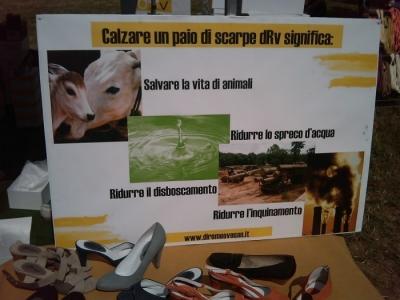 TAVOLO ANIMALS ASIA - Giavera del Montello (TV) - 22 maggio 94