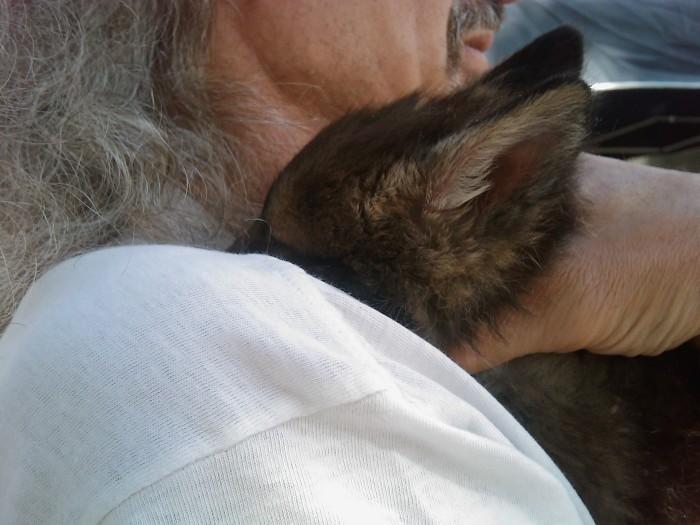 TAVOLO ANIMALS ASIA - Giavera del Montello (TV) - 22 maggio 237