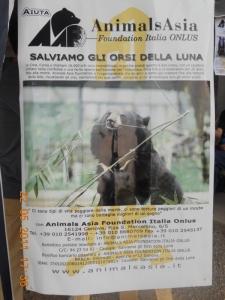 TAVOLO ANIMALS ASIA - Giavera del Montello (TV) - 22 maggio 76