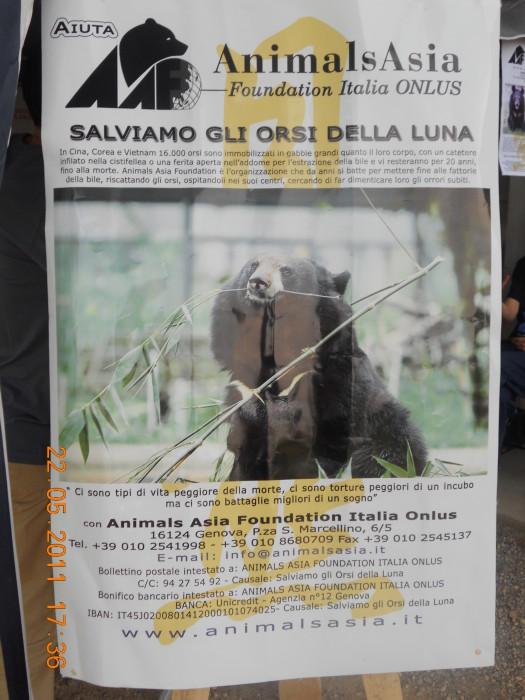 TAVOLO ANIMALS ASIA - Giavera del Montello (TV) - 22 maggio 202
