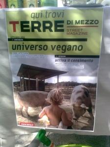Vivo Vegetariano Dro (TN) 17