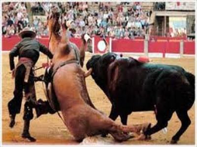 corrida_cadf7f539323ae43ea129a88f97cf1a5