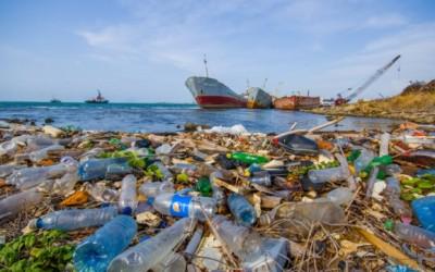 Detriti di plastica: sono veramente dappertutto! 4