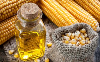 Olio di mais: proprietà e benefici 7