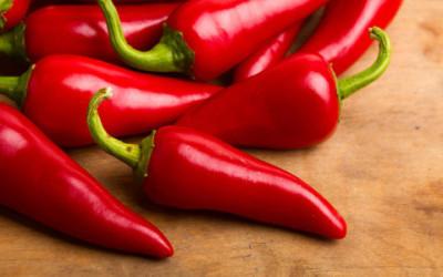 Perchè è piccante il peperoncino? Grazie alla capsaicina… 7