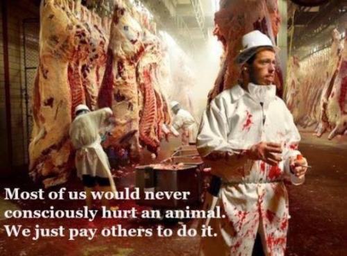➡️➡️➡️ www.vegansociety.com 5