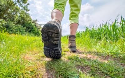 Le 12 migliori scarpe da trekking per le prossime vacanze 8