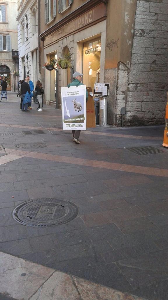 Manifestazione a Trento in difesa degli agnelli a Pasqua 24-25-26 Marzo - Parte 2 12
