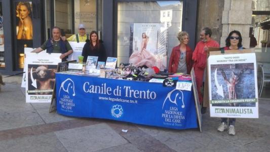 Manifestazione a Trento in difesa degli agnelli a Pasqua 24-25-26 Marzo - Parte 2 6