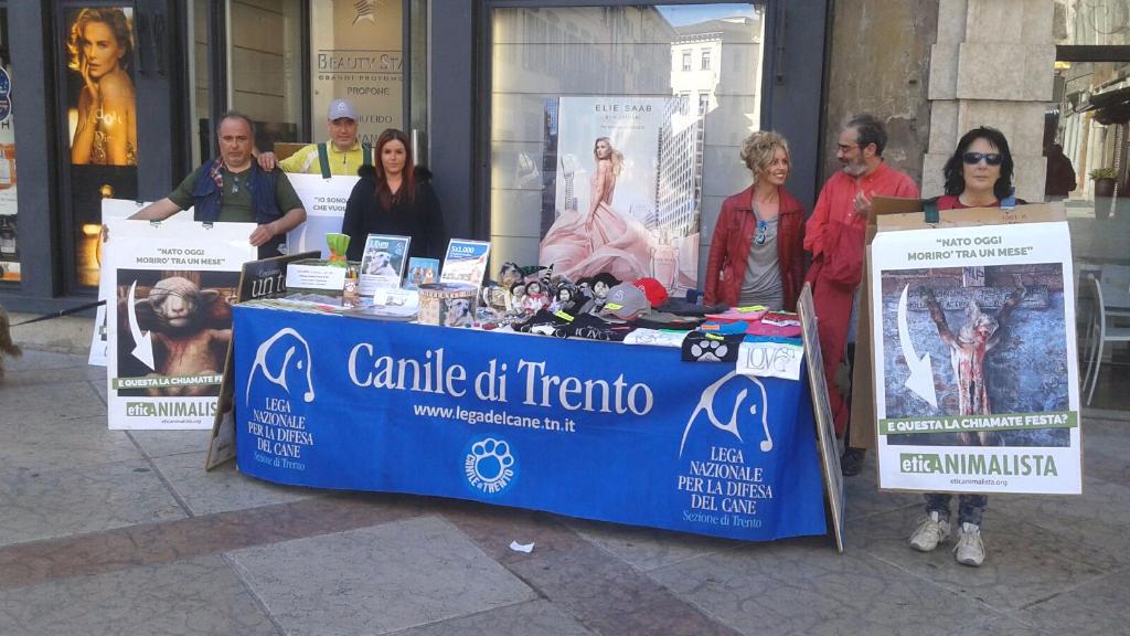 Manifestazione a Trento in difesa degli agnelli a Pasqua 24-25-26 Marzo - Parte 2 14