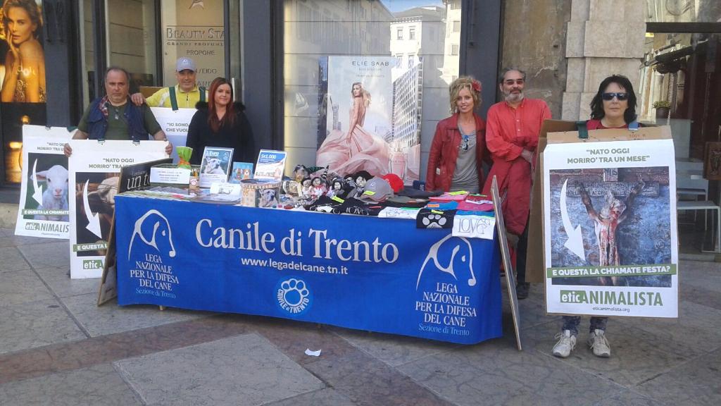 Manifestazione a Trento in difesa degli agnelli a Pasqua 24-25-26 Marzo - Parte 2 10