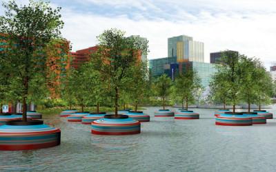 Nel porto di Rotterdam ideata foresta galleggiante 1