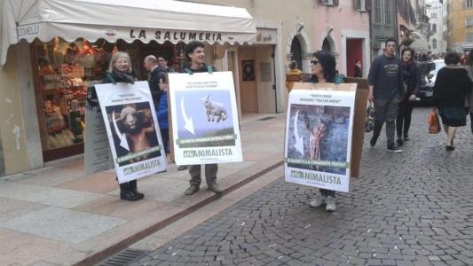 Manifestazione a Trento in difesa degli agnelli a Pasqua 24-25-26 Marzo 1