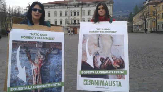 Manifestazione a Trento in difesa degli agnelli a Pasqua 24-25-26 Marzo 16
