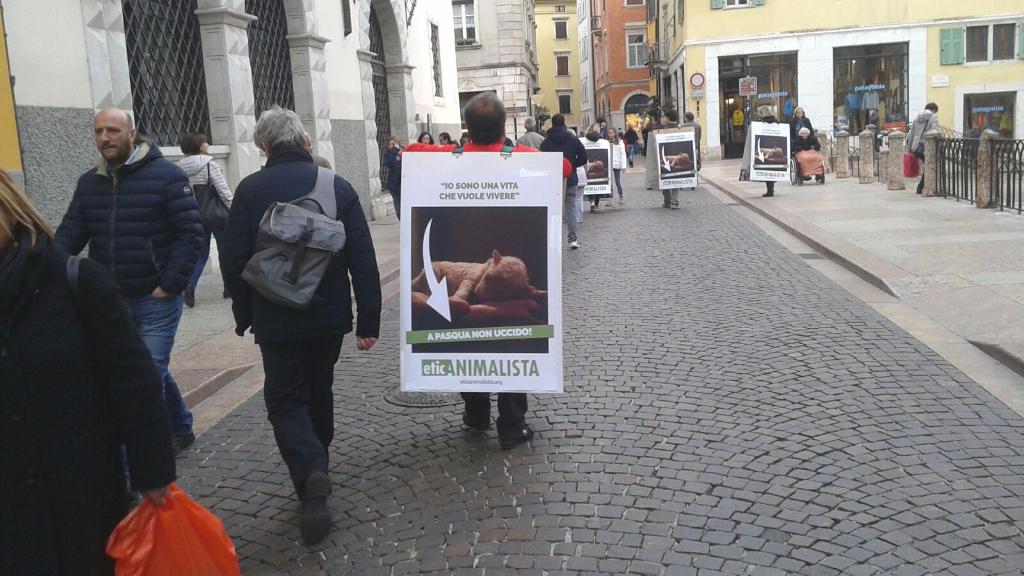 Manifestazione a Trento in difesa degli agnelli a Pasqua 24-25-26 Marzo 20